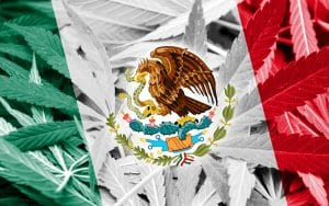 Mexico Set to be World's Largest Legal Cannabis Market