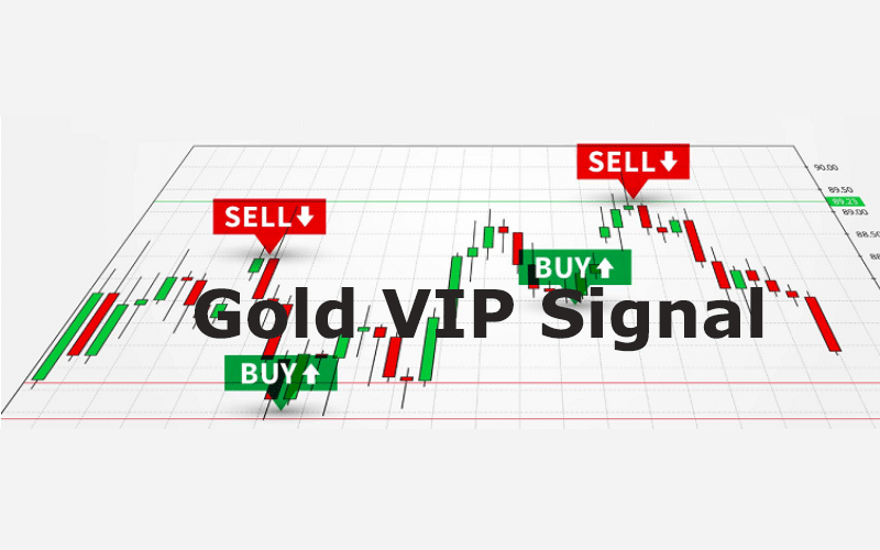 Gold VIP Signal Review