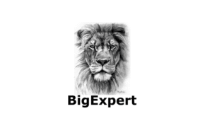 BigExpert Review
